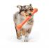 Играчка пръчка Zwig - за безопасна игра на вашето куче, Zogoflex