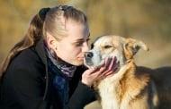 10 причини да смятаме кучетата за по - добри от гаджетата