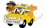 транспорт на коте