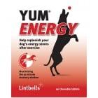 YUM ENERGY 90 БР. – овкусени таблетки осигуряващи енергия преди или след натоварване за кучета