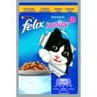 """""""FELIX Junior"""" - Пауч за малки котенца"""