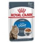 Royal Canin Ultra Light - храна за израснали котки със склонност към наднормено тегло, с намалено съдържание на калории 85гр