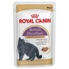 Royal Canin Breed British Shorthair  - Консервирана храна специално за британски късокосмести котки над 12 месеца, подпомага здравето на пикочните пътища, с ниско енергийно съдържание, за здрава кожа и красива козина 85гр