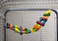 Шарена стълба за големи папагали