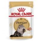 Royal Canin Breed Persian - Консервирана храна, специално за персийски котки над 12 месеца; с протеини, мастни киселини и минерали; поддържа пикочните пътища, храносмилането и козината, намалява образуването на космени топки 85гр