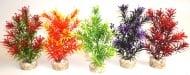 Растение Tropica 20см от Sydeco, Франция