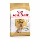 Суха храна за йоркширски териери на възраст над 8 години Royal Canin Breed Yorkshire Terrier Adult 8+, две разфасовки