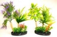 Растение Aqua Garden Black Style 22см от Sydeco, Франция