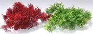 Растение Tropical Moss 8см от Sydeco, Франция