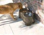 Ергономична хранилка за кучета страдащи от артрит