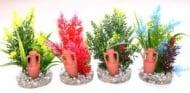 Растение Amfora Large 11см - различни цветове от Sydeco, Франция