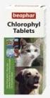 """""""Chlorophyl Tablets"""" - Tаблетки с хлорофил, премахва лошия дъх"""