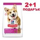 Hills Science Plan Small&Mini Adult с агнешко и ориз - 0,3 кг. 2+1 - Пълноценна суха храна за дребни и миниатюрни породи кучета в зряла възраст 1-6 години