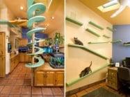 5 дизайнерски удобства, които да направите вкъщи за котката си
