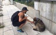Азис сърдечно призова всички хора да дават вода на бездомните животни по улиците