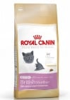 """Kitten British Shorthair"" -  Храна за Британски късокосмести котенца до 1 година"