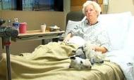 Миниатюрен шнауцер спасява стопанката си след тежко падане