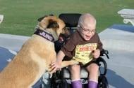 Обречено на смърт куче и неизлечимо болно момче спасяват живота си взаимно