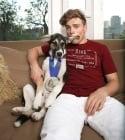 Невероятната история на бездомни кучета в Сочи, намерили щастие в домовете на спортисти