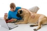 Полезна информаця за търсенето на животни / хора - онлайн