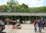 Почина още едно животно в столичния зоопарк