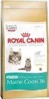 """""""Kitten Maine Coon"""" – Храна за подрастващи, бременни и кърмещи котки от породата Майн Куун"""