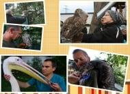 Спасителният център за диви животни към Зелени балкани ни отправя Коледно предизвикателство