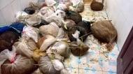 Откриха десетки живи животни вързани в чували
