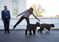 Заедно с двете си кучета Мишел Обама посреща коледната елха в Белия дом