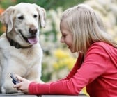 Защо кучетата се взират в нас?