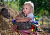 Затрогващи снимки, доказващи, че котките носят златно сърце
