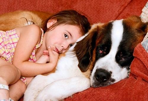 12 причини, поради които всяко дете трябва да порасне с куче (1 част)