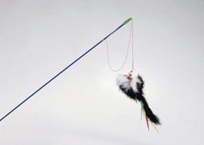 Играчка-въдица с мишле