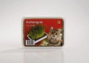 Котешка трева - готова смес + съд
