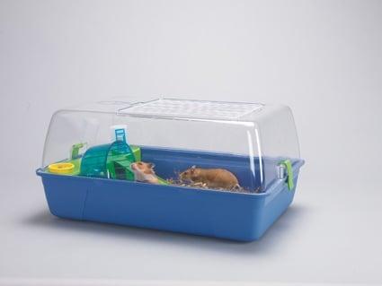 Оборудвана къща за дребни гризачи Rody Hamster