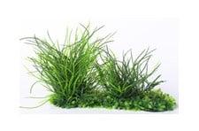 Изкуствено растение - 20см.