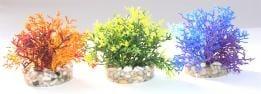 Растение Coral Reef 8см от Sydeco, Франция
