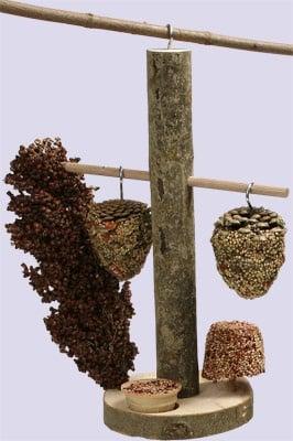 Бистро за птици