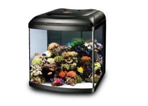 Черен аквариум Marine Reef с вграден скимер - 80л