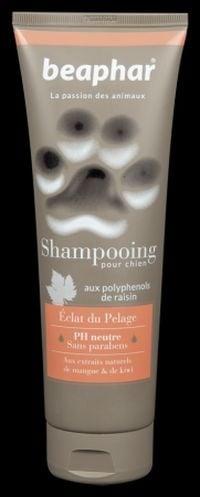 Възстановяващ шампоан за кучета с екстракт от манго и киви