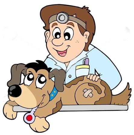 Изследвания - Куче