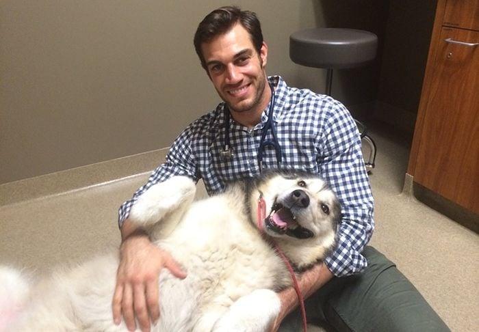 Най - готиният ветеринар, който със сигурност ще накара дамите често да водят любимеца си на преглед