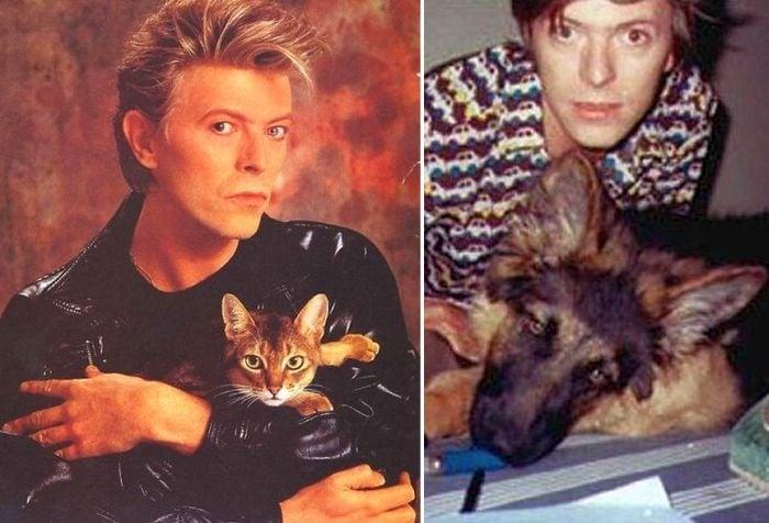 Освен талантлив музикант и актьор, Дейвид Бауи беше и голям любител на животните