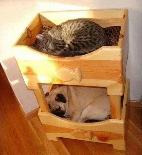 Спящи тук и там