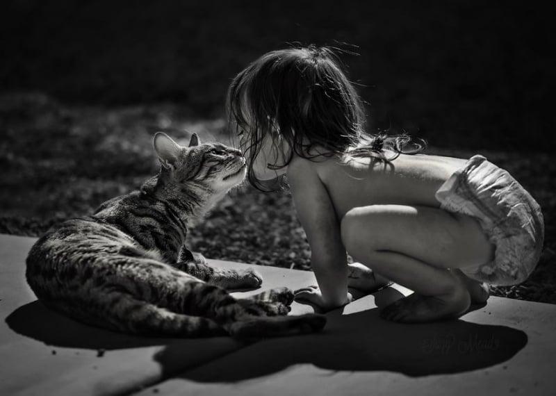 Топли снимки, запечатали приятелството между деца и котки