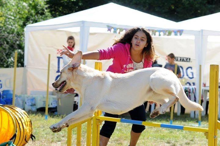 Уникална по рода си демонстрация с кучета ще се проведе на 27 септември в Стара Загора