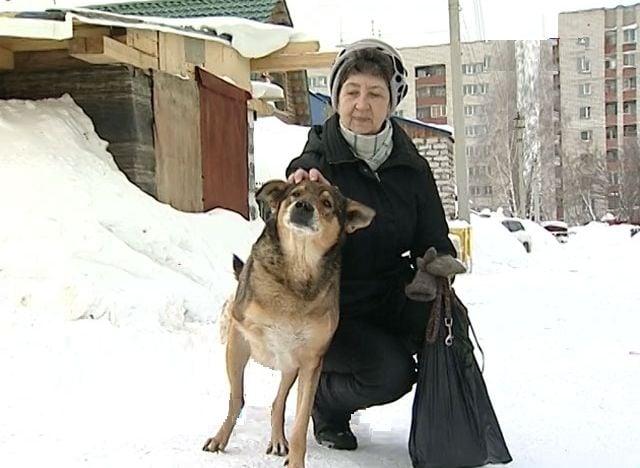 Загрижени хора спасиха трикрако бездомно куче